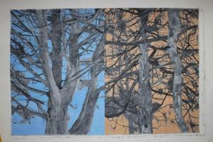 Mark-Lavatelli-TreeHistoric-Big-Orbit-CEPA-Exhibition-02